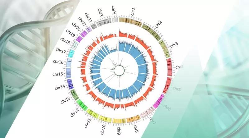 重大突破!中国学者首次破译人类DNA-6mA甲基化图谱