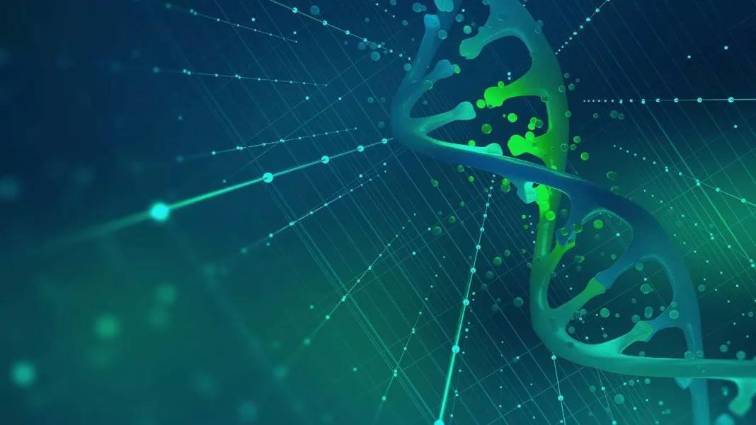 """以纳米孔测序追踪地球生命!这项耗资1.8亿美元的DNA""""条形码""""项目旨在发现200万新物种"""