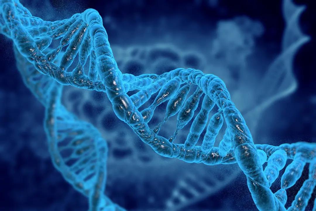 倒计时1天 | 一次全外显子组检测,持续数据深挖掘,安捷伦与金准基因联合在线讲座